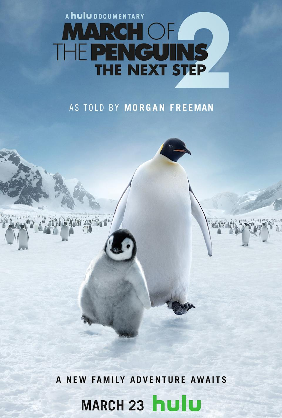 A poster for <i>March of the Penguins 2</i>. (Hulu)