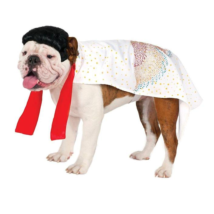 "<p>There better be a bacon and peanut butter reward for this.</p> <br> <br> <strong>Costume Kingdom</strong> Elvis Cape Pet Halloween Costume, $21.95, available at <a href=""https://costumekingdom.com/p-27600-elvis-cape-dog-pet-halloween-costume.aspx"" rel=""nofollow noopener"" target=""_blank"" data-ylk=""slk:Costume Kingdom"" class=""link rapid-noclick-resp"">Costume Kingdom</a>"