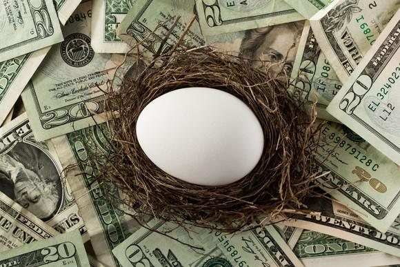 Nest egg sitting on money