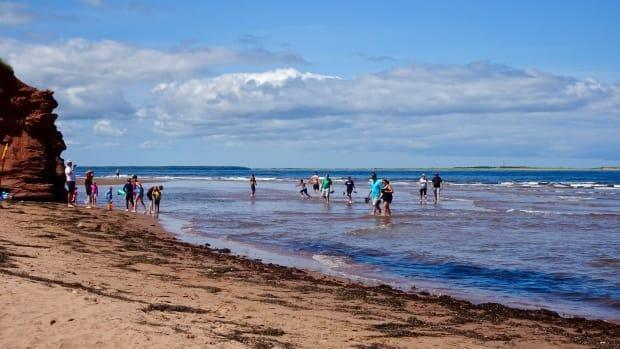 Cabot Beach opened to swimmers at 10 a.m. on July 30. (Jane Robertson/CBC - image credit)