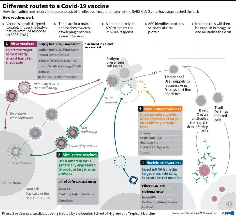 Leading Covid-19 vaccines and the different approaches they take