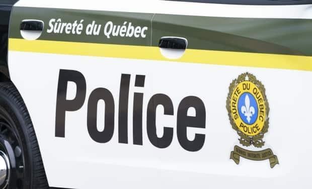 More charges include attempted murder of peace officers, a kidnapping-related charge, and several weapons-related offences. (Paul Chiasson/The Canadian Press - image credit)