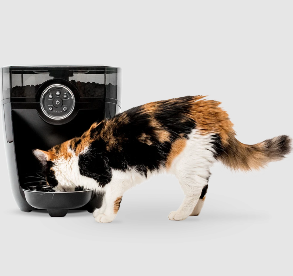 "<p>Now you can sleep in while your pet enjoys breakfast bright and early with this automated feeder. </p> <p><strong>Buy it!</strong> Feeder-Robot, $249.00; <a href=""https://www.litter-robot.com/feeder-robot.html"" rel=""nofollow noopener"" target=""_blank"" data-ylk=""slk:Litter-Robot.com"" class=""link rapid-noclick-resp"">Litter-Robot.com</a></p>"