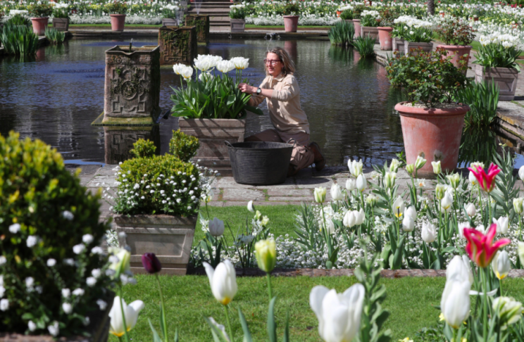 The gardens are already open and free to the public (PA)