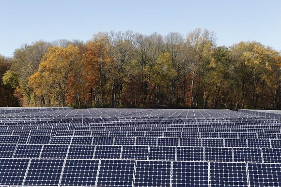 Solar array with trees in the background.
