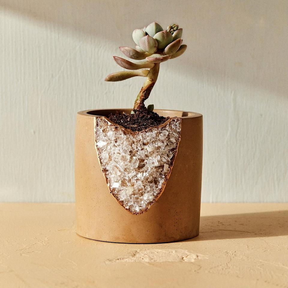 <p>If they're obsessed with plants, they need this chic <span>House of Harlow 1960 Creator Collab Geode Planter</span> ($85) in their life.</p>