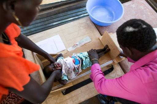 <p>UN food agency urges 'agroecology' to fight famine</p>