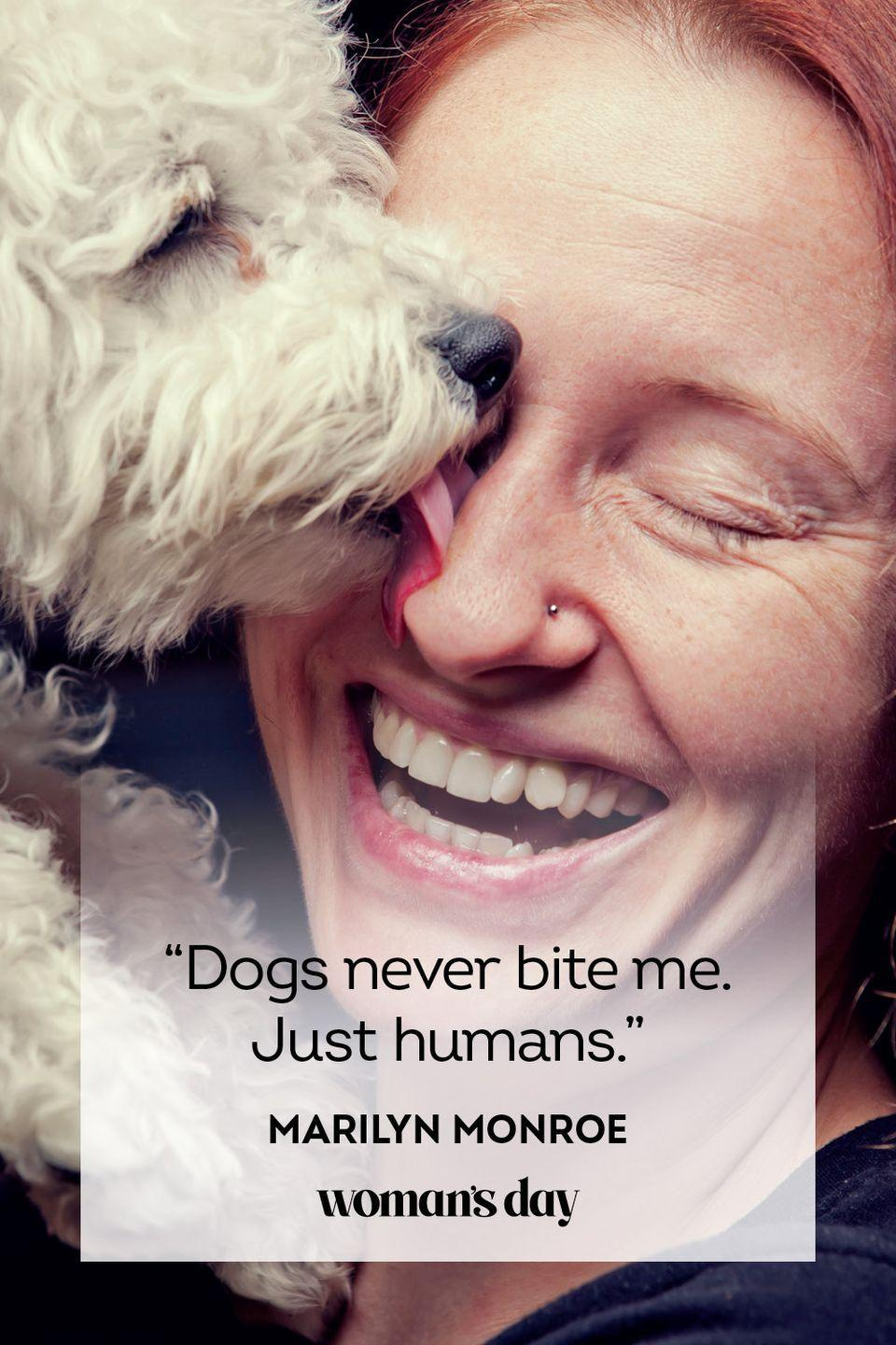 """<p>""""Dogs never bite me. Just humans.""""</p>"""
