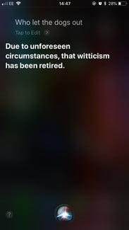 funny questions to ask siri dogs out