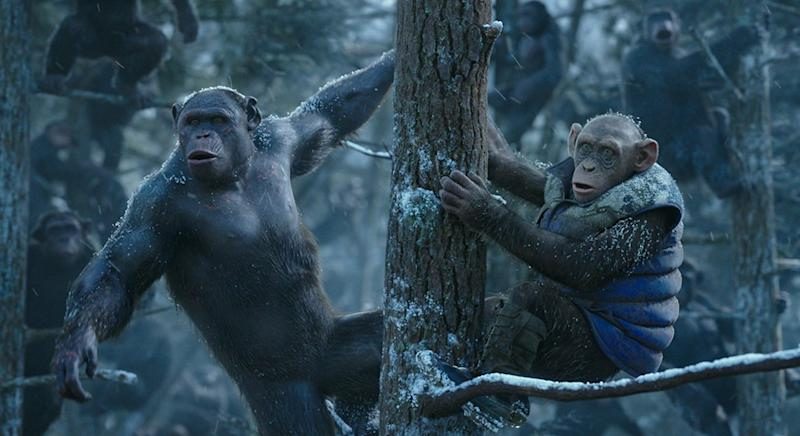 Bad Ape (R) could be the focus of the new film (Credit: Fox)