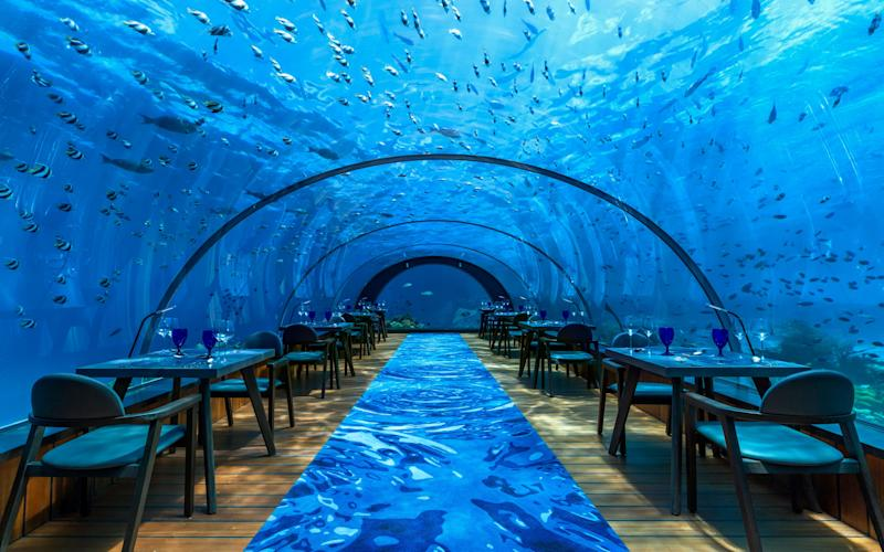 Eating in a restaurant can be special even without a spectacular setting