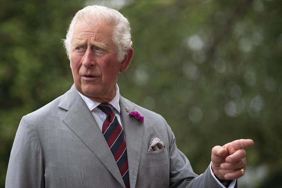The Prince of Wales (PA Wire)