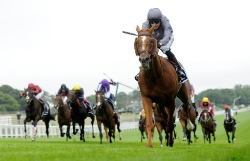 Pacemakers least of all those trained by Aidan O'Brien will never be taken for granted again after Serpentine made merry up front winning the Epsom Derby