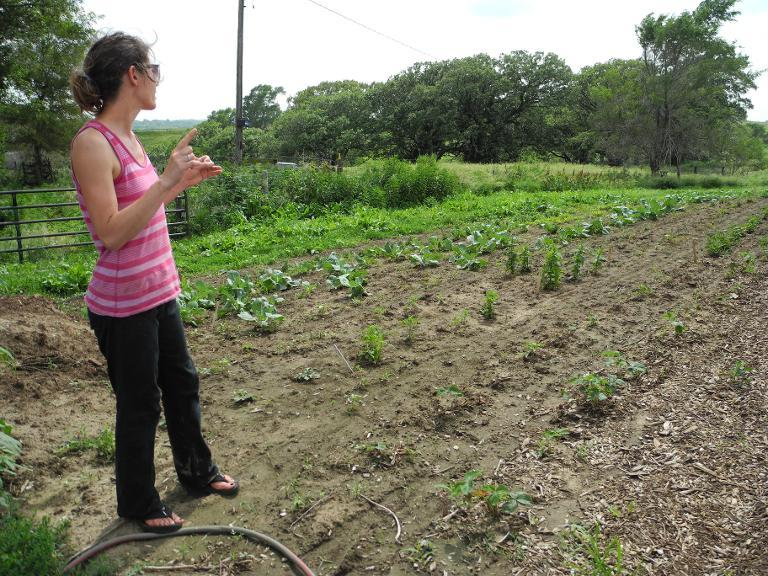 Danelle Myer shows the field where she will grow most of her vegetables next year, located next to her house, June 18, 2014 in Logan, Iowa