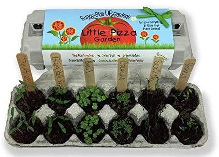 """<h2>Little Pizza Garden Kit<br></h2><br>All you need to grow the freshest pizza toppings, including seeds for oregano, tomato, basil, scallions, bell pepper, and parsley. Plus, the carton is made out of 100% recycled materials. <br><br><strong>Backyard Safari Company</strong> Little Pizza Garden Kit, $, available at <a href=""""https://www.amazon.com/Backyard-Safari-Company-Sunny-Side-Gardens/dp/B0161WS05W"""" rel=""""nofollow noopener"""" target=""""_blank"""" data-ylk=""""slk:Amazon"""" class=""""link rapid-noclick-resp"""">Amazon</a>"""