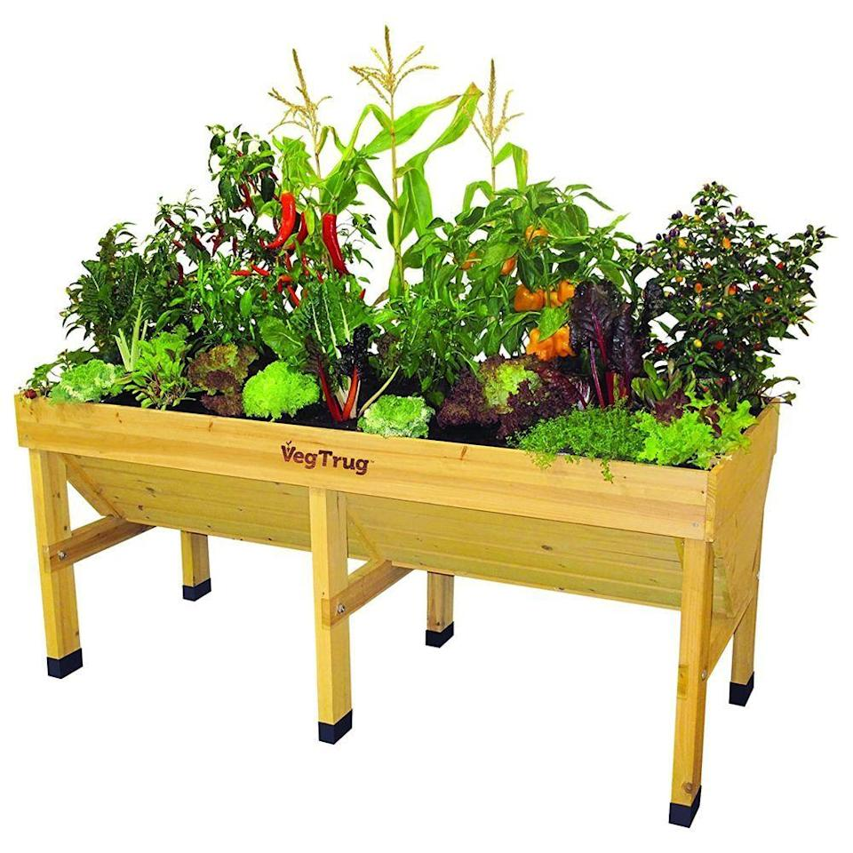 """<p><strong>VegTrug</strong></p><p>amazon.com</p><p><strong>$279.99</strong></p><p><a href=""""https://www.amazon.com/dp/B00IQ6ZGX6?tag=syn-yahoo-20&ascsubtag=%5Bartid%7C2089.g.1366%5Bsrc%7Cyahoo-us"""" rel=""""nofollow noopener"""" target=""""_blank"""" data-ylk=""""slk:Shop Now"""" class=""""link rapid-noclick-resp"""">Shop Now</a></p><p>Curtail the weeding once and for all. The VegTrug raised garden bed can house deep-rooting plants thanks to its V-shaped design, and the cedar-wood build is treated with a food-safe stain, so you can grow an entire salad garden right in your own backyard. </p><p>It comes with a replaceable liner to keep the soil separate from the wood to prevent deterioration, and there are gaps in the bottom slats to allow for plenty of drainage. A few reviewers also tout that its 2.6-foot height makes it accessible to wheelchair users.</p>"""