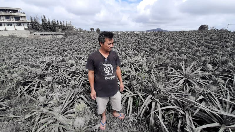 Farmer Jack Imperial, 49, poses for a portrait in his pineapple plantation covered with ash from the erupting Taal Volcano
