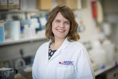 Danika Hill, a research fellow at Australia's Monash University, was awarded the 2020 Michelson Prize for Human Immunology and Vaccine Research. The $150,000 prize was announced Monday, Aug. 3 by Gary K. Michelson, founder and co-chair of the Michelson Medical Research Foundation and Wayne Koff, president and CEO of the Human Vaccines Project.