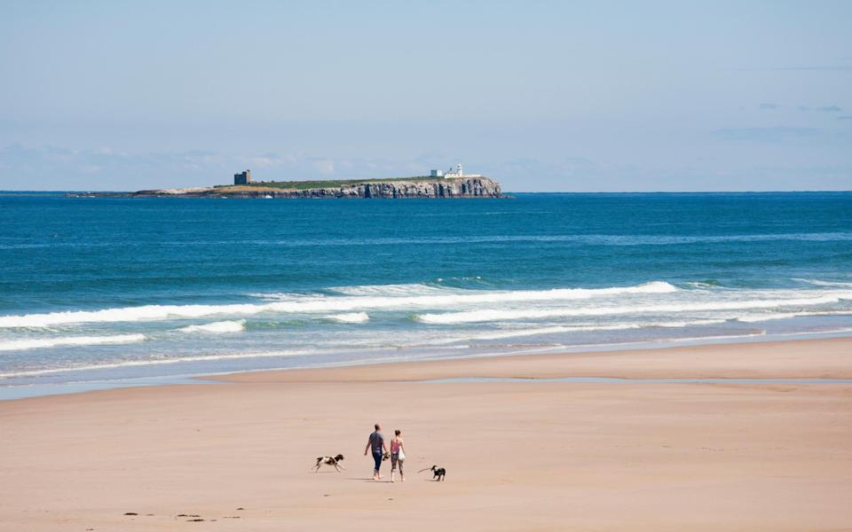 Swap Cornwall for Northumberland, says our expert - Getty