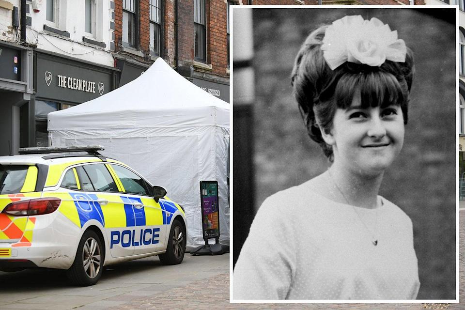 <p>The police hunt for clues to the disappearance of Mary Bastholm (right).</p> (PA)