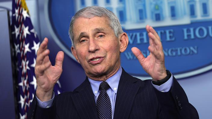 Dr Anthony Fauci, Director of the National Institute of Allergy and Infectious Diseases, speaks during a White House press briefing in January. (Alex Wong/Getty Images)