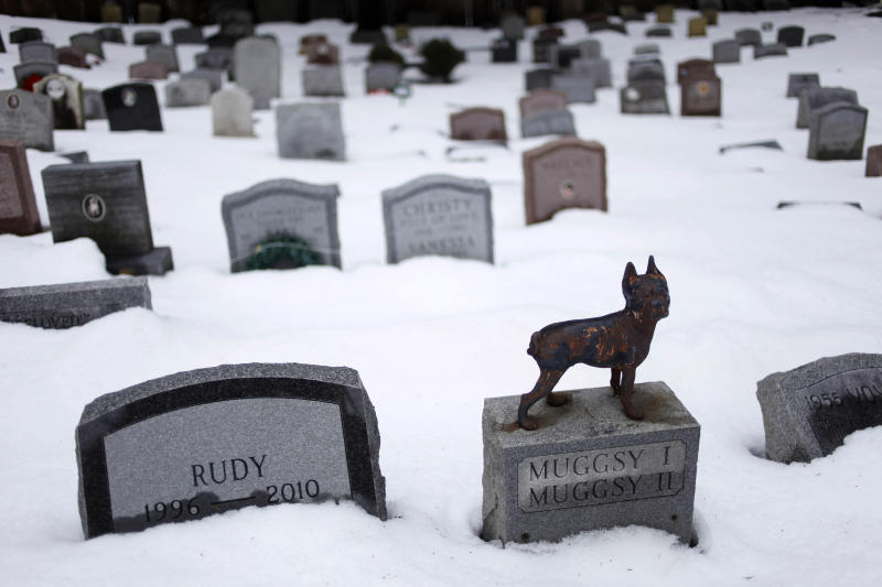 "FILE - In this file photo of Jan. 19, 2011 photo, headstones marking the graves of pets are spread throughout the Hartsdale Pet Cemetery in Hartsdale, N.Y., the first burial ground for animals named to the National Register of Historic Places. The 116-year-old Hartsdale Pet Cemetery, final home to some 75,000 animals and a few hundred humans, is being designated for its ""social history and landscape architecture."" (AP Photo/Seth Wenig, File)"