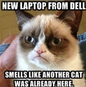 Dell's Latest Problem? Computers That Smell Like Cat Urine.