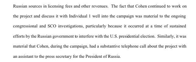 Mueller noted that Cohen's alleged discussions of the Moscow Project with Trump were especially concerning considering Russia's attempts to interfere with the election. (Photo: Special counsel's office)