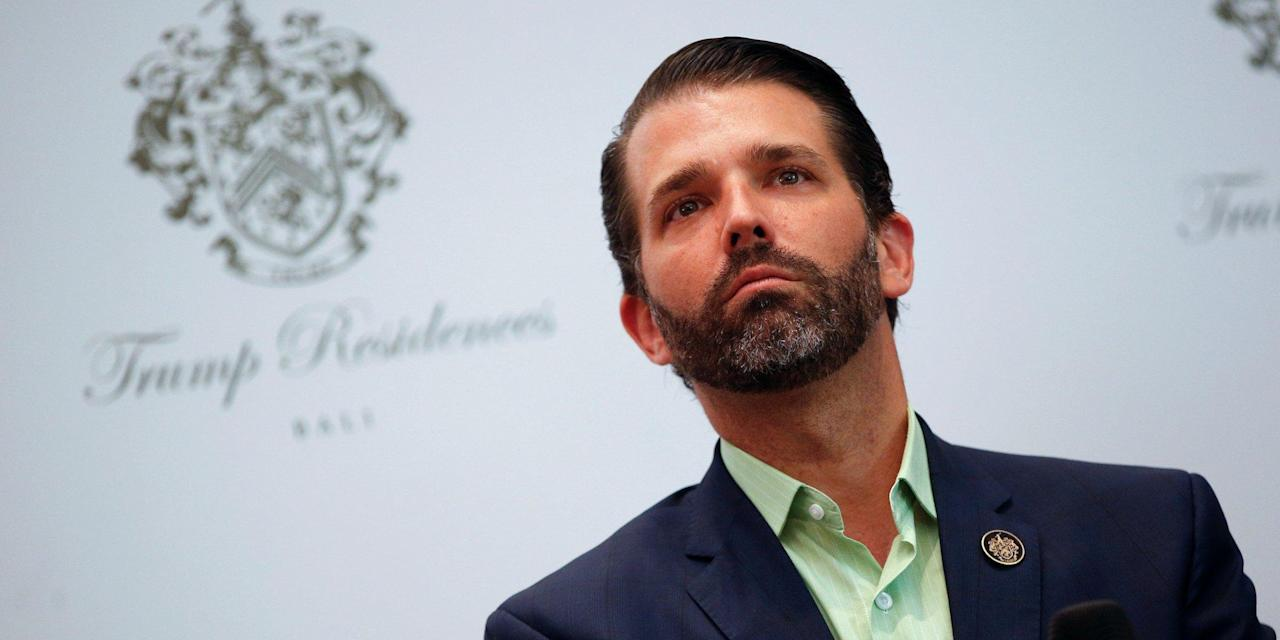 Trump Jr.'s new book is a lengthy rant about how his family has been victimized by Trump's presidency