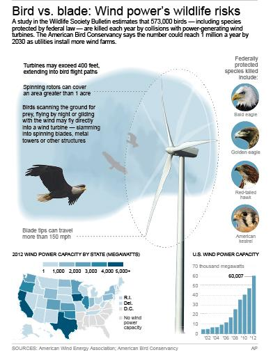 Graphic shows how birds are harmed by wind turbines; 3c x 7 inches; 146 mm x 177 mm;