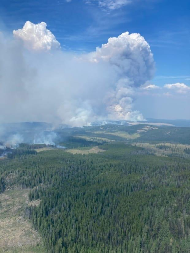 The Tremont Creek Wildfire, deemed 'out of control' by the B.C. Wildfire Service, is seen near Ashcroft, B.C., on July 17. (B.C. Wildfire Service/Twitter - image credit)