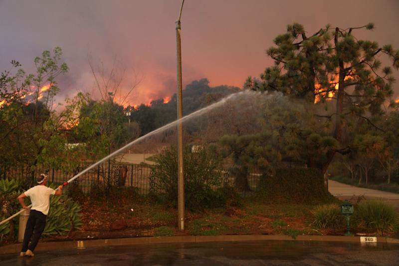 A homeowner attempts to water down a tree on his property while a wildfire burns in the hills just north of the San Gabriel Valley community of Glendora, Calif. on Thursday, Jan 16, 2014. Southern California authorities have ordered the evacuation of homes at the edge of a fast-moving wildfire burning in the dangerously dry foothills of the San Gabriel Mountains. (AP Photo/Nick Ut)