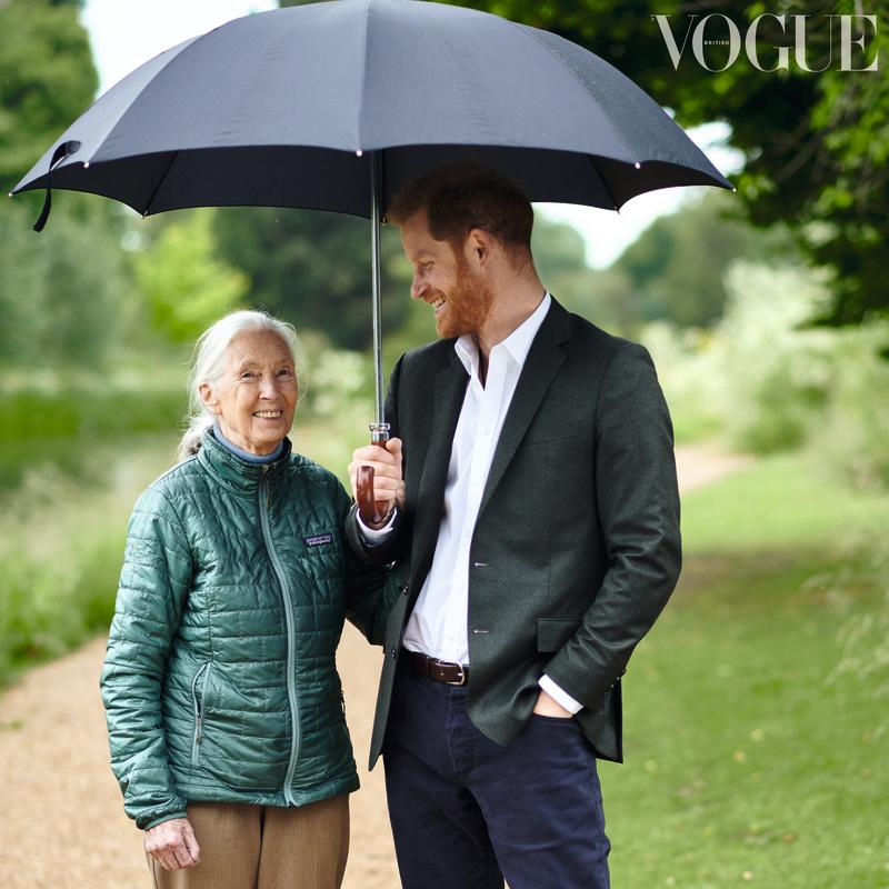 His Royal Highness, The Duke of Sussex interviews Dr Jane Goodall in the September Issue of British Vogue. [Photo: Chris Allerton]