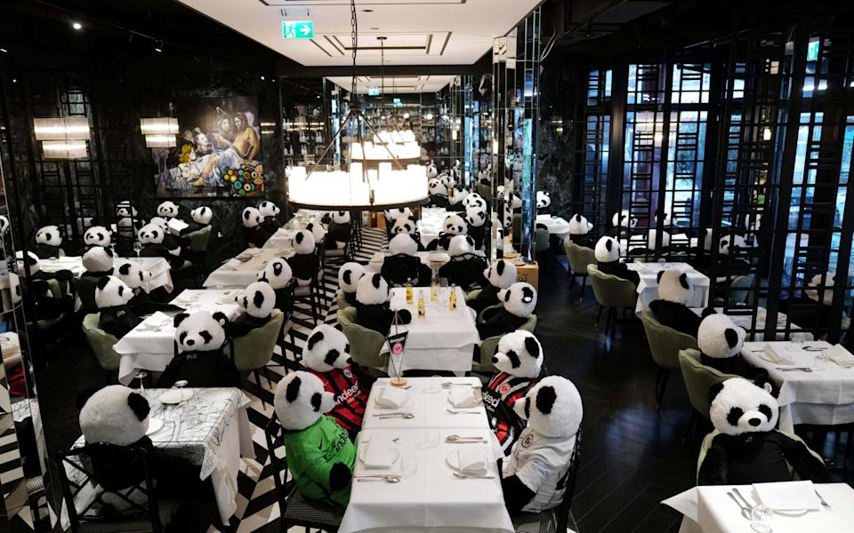 "Fluffy toy panda bears as part of the art installation ""Panda mie"" by Italian restaurant owner Giuseppe ""Pino"" Fichera  - Kai Pfaffenbach/Reuters"
