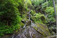 <p>Trails run alongside stunning waterfalls and streams that simply cannot be done justice in photos. Along these paths you'll find the area's most famous site, the Rainbow Waterfall, which wow with water tumbling 80 feet into the pool below.</p>