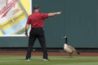 A ballpark employee tries to tell a goose to leave center field between the second and third innings of a spring training baseball game between the Chicago Cubs and the Arizona Diamondbacks Sunday, March 7, 2021, in Scottsdale, Ariz. The goose, who stayed in the outfield for most of the game, was joined by a second goose in the fifth inning. (AP Photo/Ashley Landis)