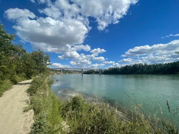 The North Saskatchewan has been a river of a different colour in Edmonton this summer.  (Wallis Snowdon/CBC News - image credit)