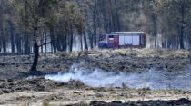 Last year, Germany saw the hottest year on record, with temperatures touching 40 degrees at 25 measuring stations on July 25, 2019. The last two years of extreme heat, which saw a total of 1,708 forest fires in 2018, the highest number of fires since 2003, along with pests and timber disease, have led to a massive reduction of German forests. <br><br>This has a direct impact on CO2 levels, as forests absorb 62 million tonnes of CO2 every year, which is 7 percent of the country's total carbon emissions. Weather conditions caused a total of 1,246 deaths in 2018, leading to losses USD 5,038 million.<em><strong><br><br>Image: </strong></em>Firefighters passing a burned out field at a national park at the Dutch-German border near Herkenbosch, Netherlands, Wednesday, April 22, 2020. (AP Photo/Martin Meissner)