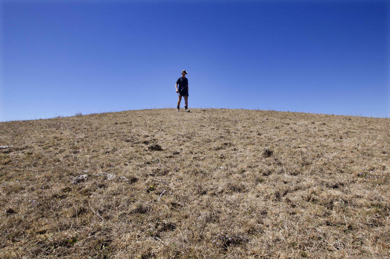 In this photo from March 11, 2013, farmer Peter Brown walks on the dry ground on his dairy farm near Ohinewai, New Zealand. A drought in New Zealand's North Island is costing farmers millions of dollars each day and is beginning to take a toll on the country's economy. (AP Photo/New Zealand Herald, Brett Phibbs) NEW ZEALAND OUT, AUSTRALIA OUT