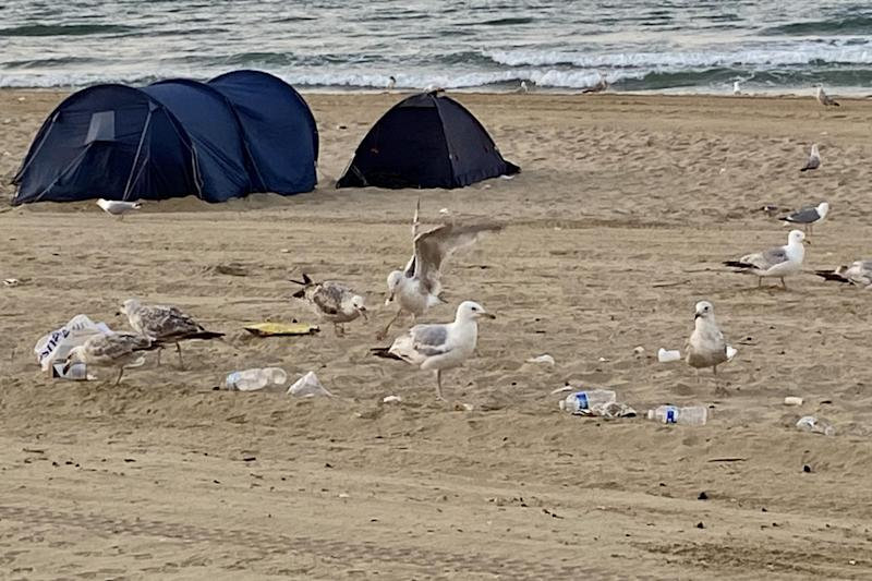 Tents popped up across the beach despite a ban on camping (Alex Rimell)