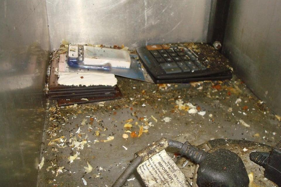 Terrible: mouse droppings covered a kitchen in Waltham Forest  (Waltham Forest Council)