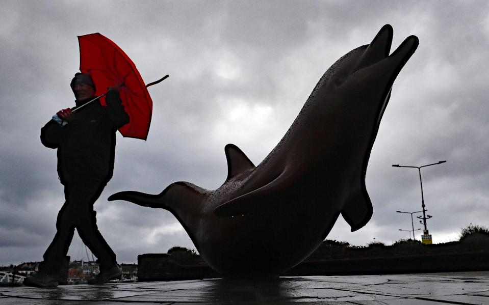 A sculpture of Fungie in Dingle, Co Kerry, where the dolphin has gone missing - Niall Carson/PA