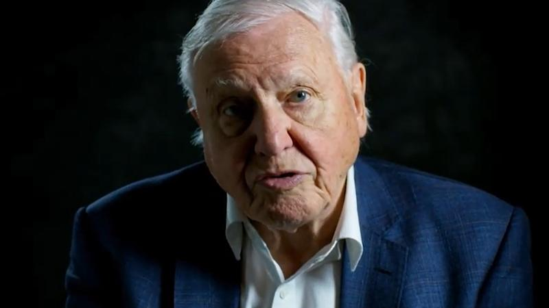 David Attenborough says 'moment of crisis' has come on climate