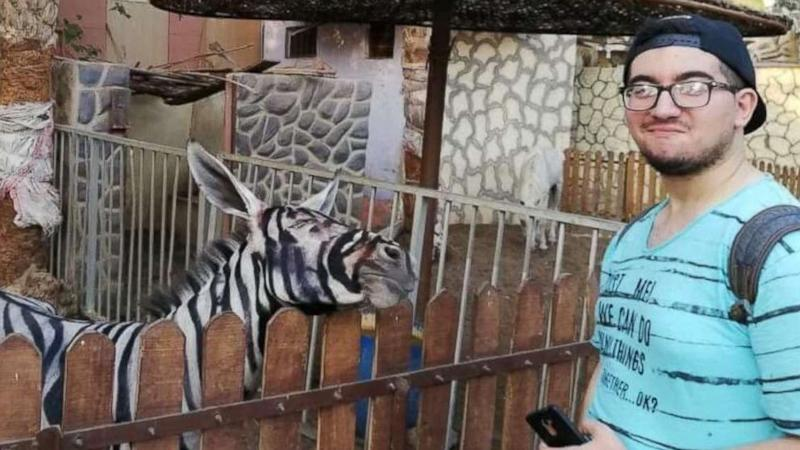 Zoo denies that 'zebra' is a donkey painted black and white