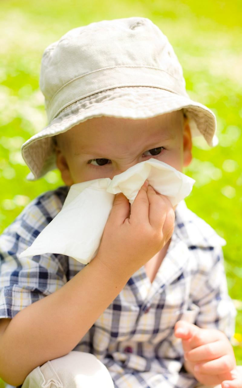 Most hay fever sufferers are allergic to grass pollen - Credit: Alamy