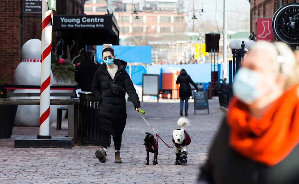A woman wearing a face mask walks dogs on a street in Toronto, Canada, on Dec. 3, 2020.  (Photo: Xinhua News Agency via Getty Images)