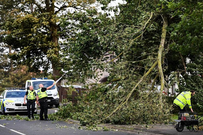 Police clear a tree as Storm Ali hits in Scotland (Getty Images)