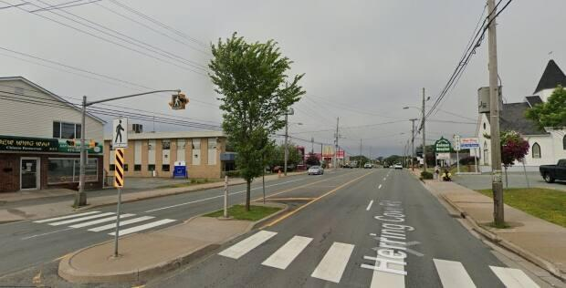 The incident happened at a crosswalk near 330 Herring Cove Rd. (Google Maps - image credit)