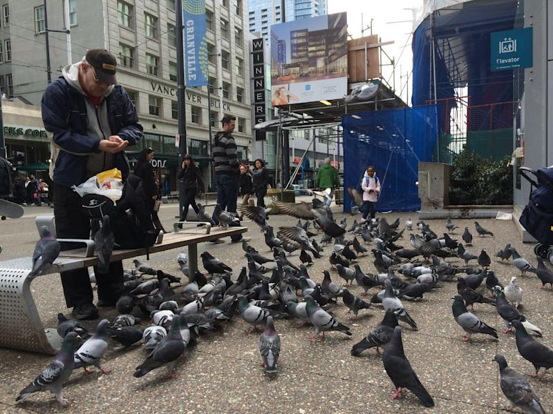 A man feeding pigeons in downtown Vancouver. (Photo: Mark Klotz/Getty Images)