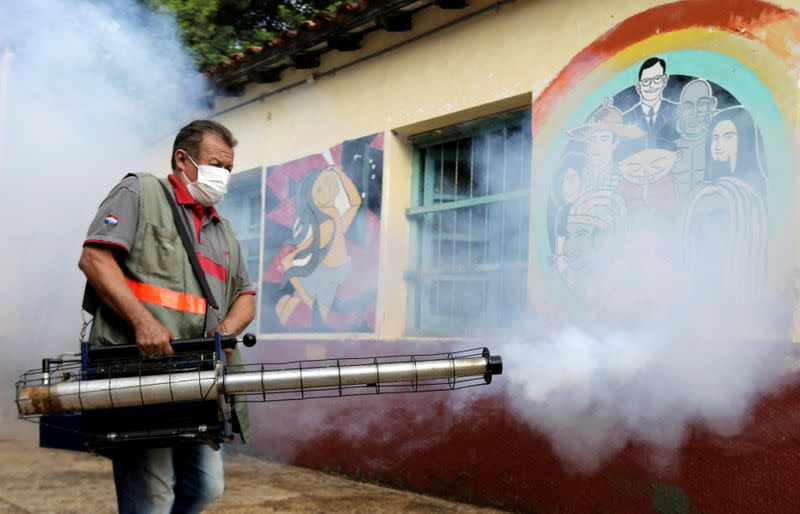 Deaths from dengue fever in Paraguay spike to 16 under strained health system